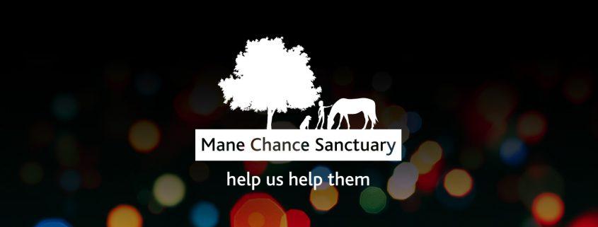 Mane Chance Logo